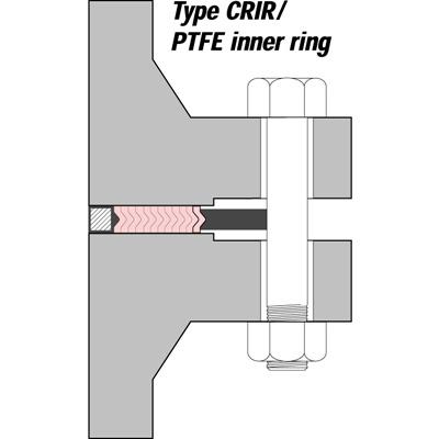 Vòng đệm kim loại làm kín SWG Type CRIR PTFE Inner Ring Klinger Vietnam